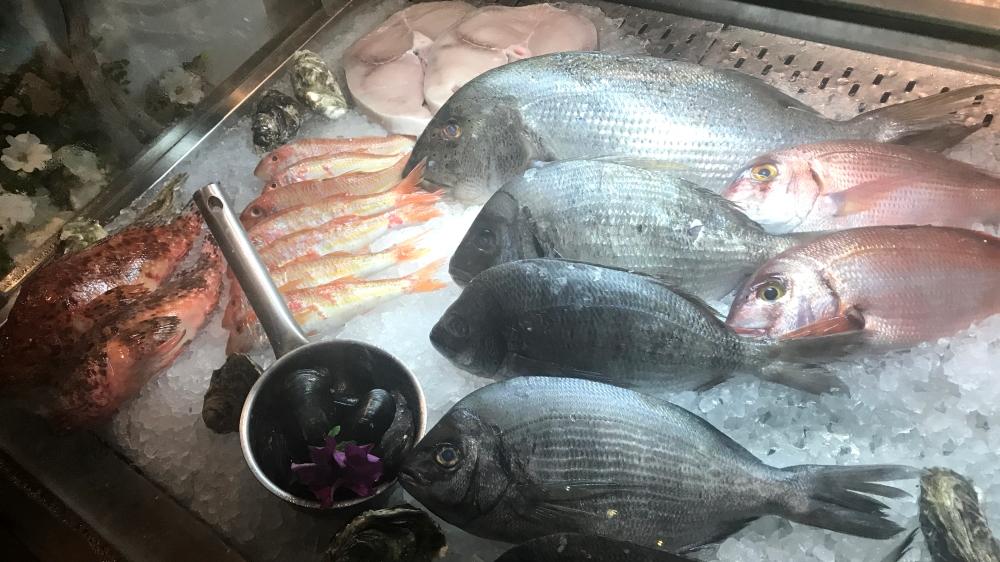 SageJoan_Kos_Barbouni_FreshFish